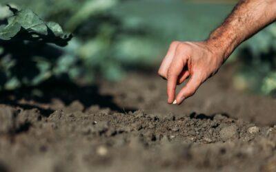 CONTADINI PER UN GIORNO | Una giornata da vero contadino!
